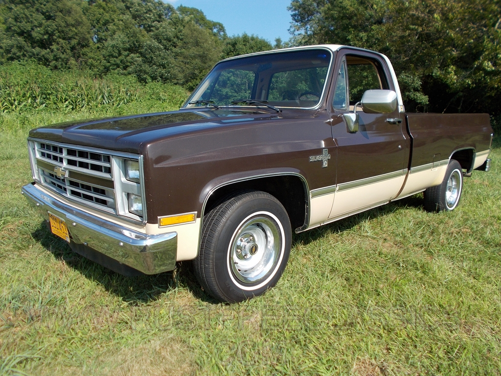 Truck chevy 1985 truck : 1985 85 Chevrolet Chevy C10 1/2 ton Long Bed LB 2wd Two Wheel ...